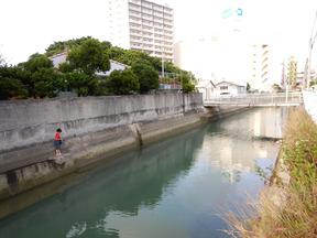 f-DSCN8548.jpg